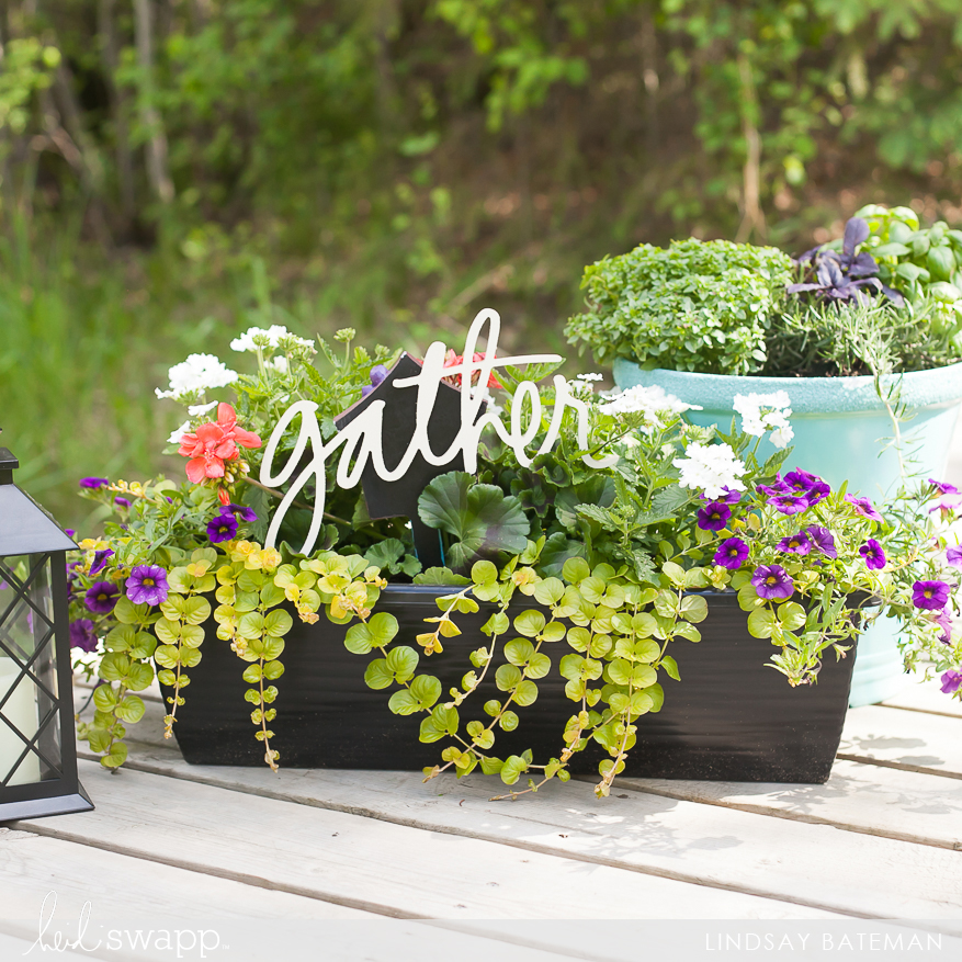 wall words to decorate your summer garden I @lindsaybateman for @heidiswapp